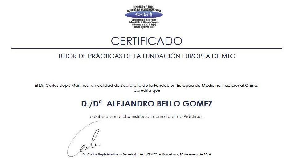 certificado de la fundación europea de MTC foto